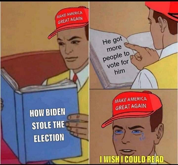 How Biden Stole the election.png