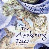 The Indigo Wizard: The Awakening Tales (Mom's Choice Awards Recipient)